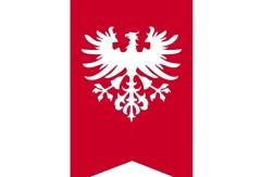 flaga-powstancow-wielkopolskich